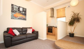 University of Plymouth student 1 bed property living room.